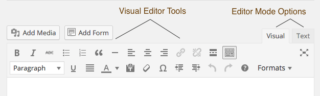 Visual Text Editor WordPress