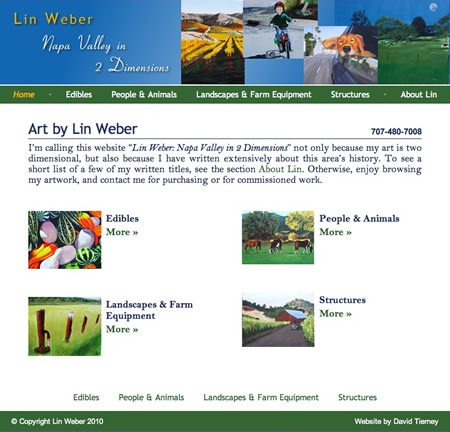 Napa Artist Web Design
