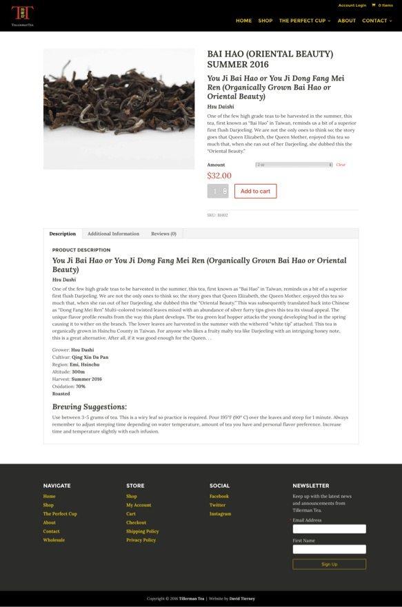 Best WordPress Theme Example